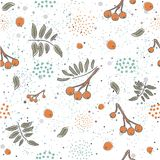 Winter Seamless Pattern with hand drawn cute rowan berries on wh. Ite background. Vector Illustration Royalty Free Stock Photography