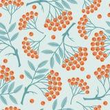 Winter seamless pattern with stylized rowan Stock Image