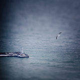 Winter seascape with seagull and lighthouse Stock Photography