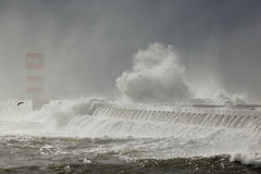 Winter seascape with stormy waves Royalty Free Stock Images