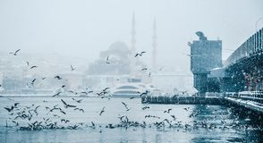 Winter seascape view of Popular New Mosgue and Galata Bridge Stock Images