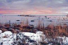 Winter seashore royalty free stock photo