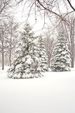 Winter season. Royalty Free Stock Images