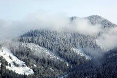 Winter Season At Hot Lake Of Yellowstone Stock Photos
