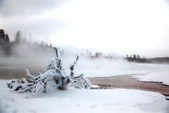 Winter Season At Lake Of Yellowstone NP Stock Photo