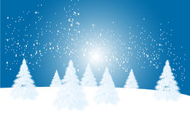 Winter Season Background. Vector illustration of the winter season background, can use as a starting of the spring Stock Photography