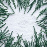 Winter season,christmas concepts ideas with pine tree and snow. Top view stock photo
