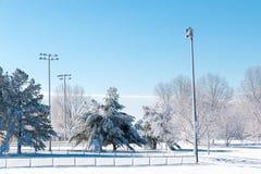 Winter season in city park. stock image
