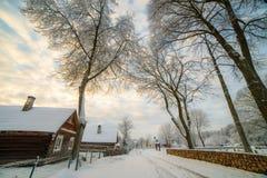 Winter season in countryside stock photos