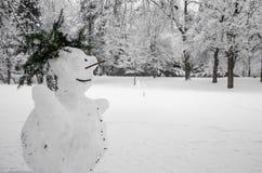 Winter season at daytime Royalty Free Stock Image