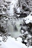 Winter season at falls royalty free stock photo