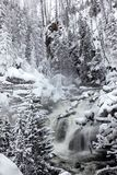 Winter season at falls of Yellowstone NP Royalty Free Stock Photography