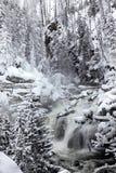 Winter season at falls of Yellowstone NP royalty free stock photography