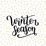 Winter season hand drawn lettering isolated on white background with golden stars. Vector illustration. Use for greeting cards, po. Sters, banners and flyers Royalty Free Stock Photos