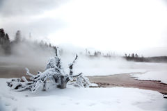 Winter season at lake of Yellowstone NP Stock Photo