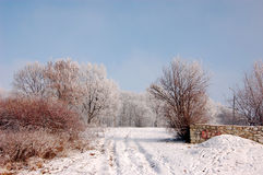 Winter season in Lower Silesia Royalty Free Stock Images