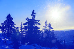 Winter season Royalty Free Stock Photography