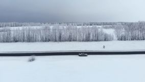 Winter season. Snow forest, aerial shot. Breathtaking natural landscape, frozen forest and dark field road with snow. Winter season. Snow forest, aerial shot stock footage