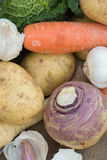 Winter seasonal vegetables collection including potatoes, parsni Royalty Free Stock Images