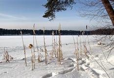 Winter See Stockfotos