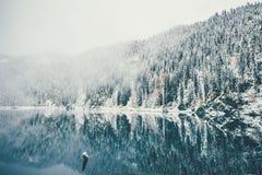 Winter See und schneebedeckter Koniferen-Forest Landscape Stockfotografie