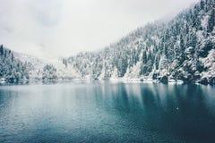 Winter See und schneebedeckter Koniferen-Forest Landscape Lizenzfreie Stockbilder