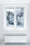 Winter  seen through the window Royalty Free Stock Image