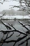 Winter Seereflexion Lizenzfreies Stockbild