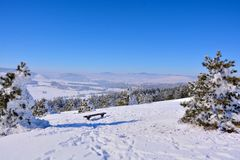 Winter in Serbien Zlatibor 2017 Stockbilder
