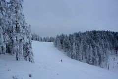 Winter in Serbien Zlatibor 2017 Lizenzfreies Stockfoto