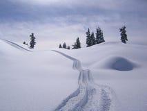 Winter Serenity. Snow Tracks Royalty Free Stock Photo