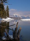 Winter Setting at the Lake Royalty Free Stock Images