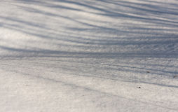 Winter shadows Royalty Free Stock Photos