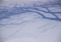 Winter shadows Royalty Free Stock Image