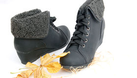 Winter shoes, female boots Stock Photography