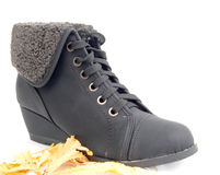 Winter shoes, female boots Royalty Free Stock Photo