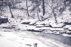 Winter Shoot. Black and white outdoor stream Royalty Free Stock Photos
