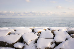 Winter shore of lake Ontario Stock Photography