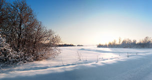 Winter of Siberia Stock Images