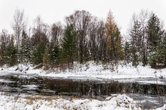 Winter Siberian landscape. The river does not freeze in winter. Royalty Free Stock Photo
