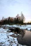 Winter Siberian landscape. The river does not freeze in winter. The reflection in the water. Sunset. Larch dropped its needles stock photography