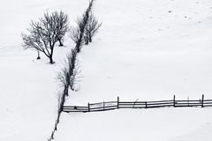 Winter silence with trees and wooden fence Royalty Free Stock Images