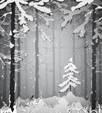 Winter. Silhouette of a winter forest, snow, black and white illustration Stock Photos