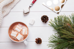 Winter sill life with hot cocoa Stock Photography