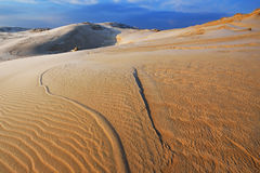 Winter, Silver Lake Sand Dunes Royalty Free Stock Photography