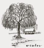 Winter sketch Stock Image