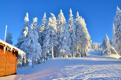 Winter ski slope Royalty Free Stock Images
