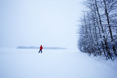Winter Ski Solitude Royalty Free Stock Images