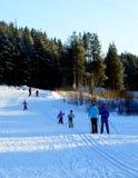 Winter.ski trip. Skiers on a walk through the pine forest Stock Photos