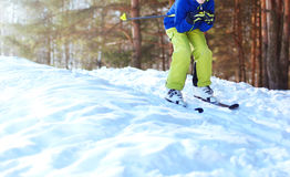 Winter skier teenager in sportswear skiing over snow at forest Stock Photography